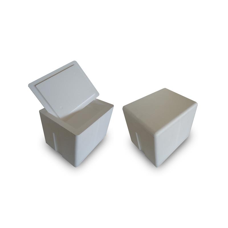 Caja EPS 51,1 Lts.