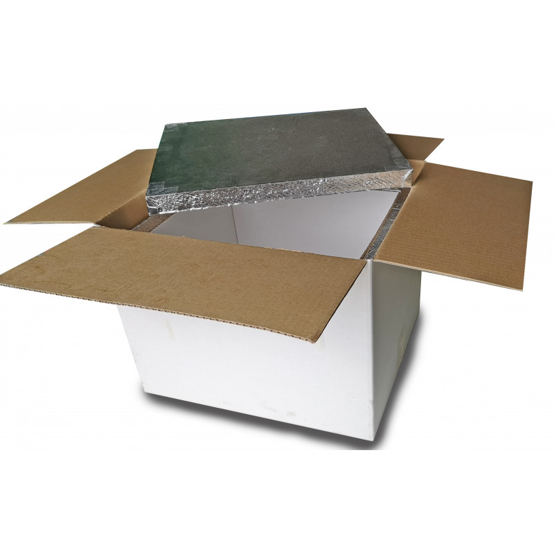 VIP-panelled isothermal container (26.25 Lts.)